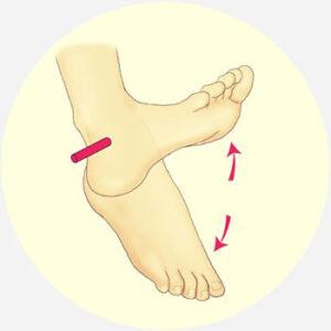 calf injuries cardiff